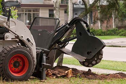 Touchwood Tree Services